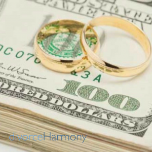 Finances in Divorce
